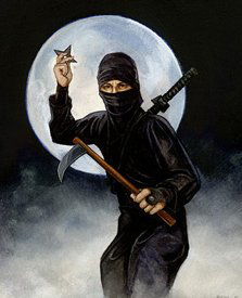 Les guerriers du Japon... Ninja